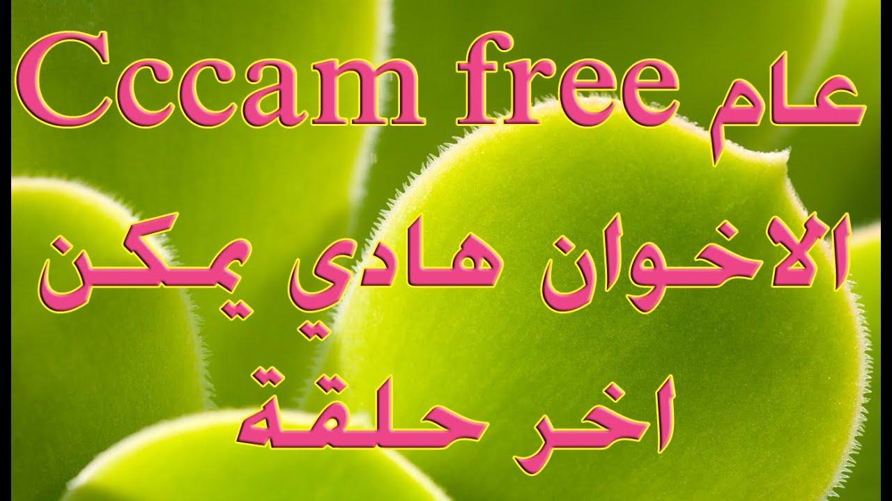 Cccam free  سيرفر سسكام مجاني مدى عااام
